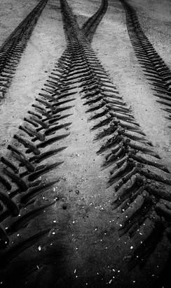 Impressions on the sand.jpg