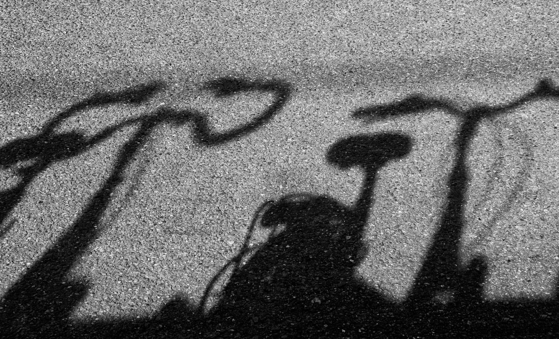 Bicycles (3).jpg