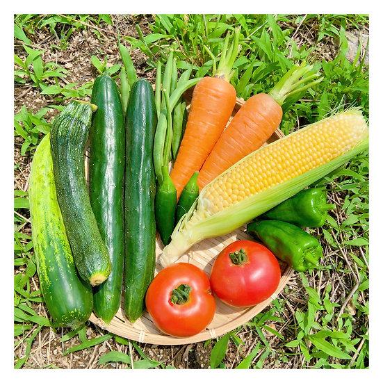 【お野菜セット】80サイズ箱 おまかせセット