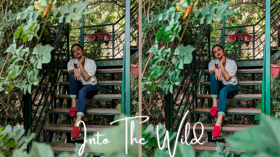 Into The Wild | Lightroom Preset– Studio Adete