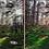 Thumbnail: Into The Wild | Lightroom Preset– Studio Adete