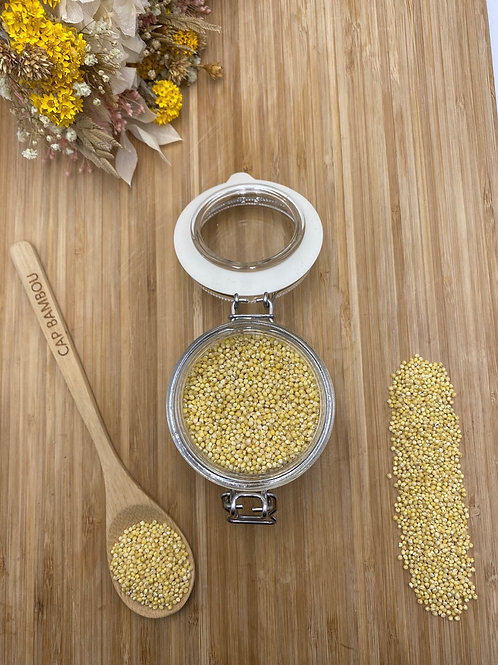 Graines de millet - 100g