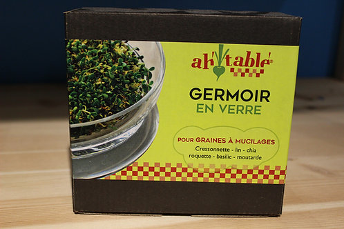 Germoir en verre