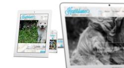 Loryn Design - Heartstone Website
