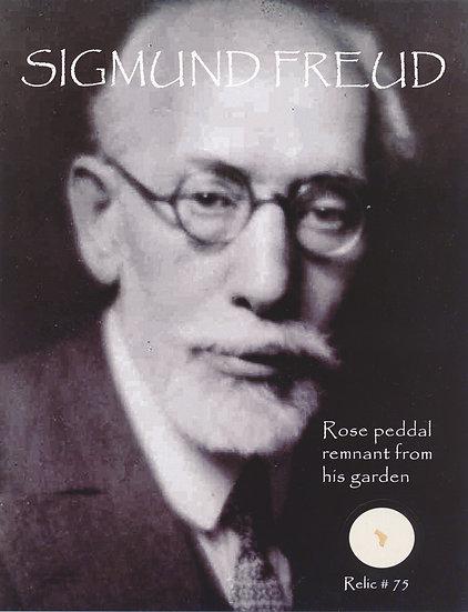 Todd Mueller Relic Card 075 - Sigmund Freud