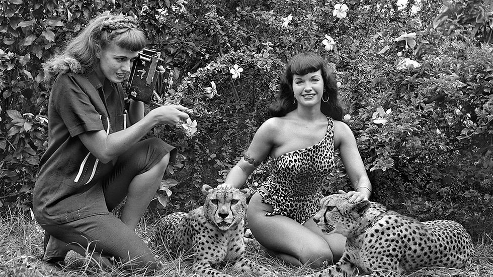 Todd Mueller autographs, betty page photoshoot, buy and sell online auction