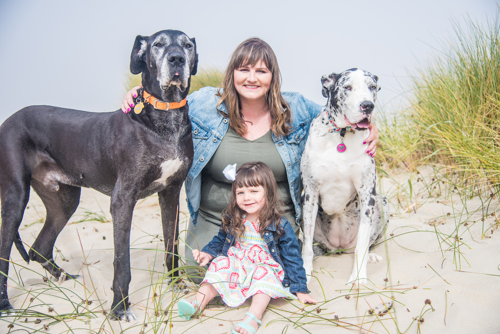 Family with Great Danes
