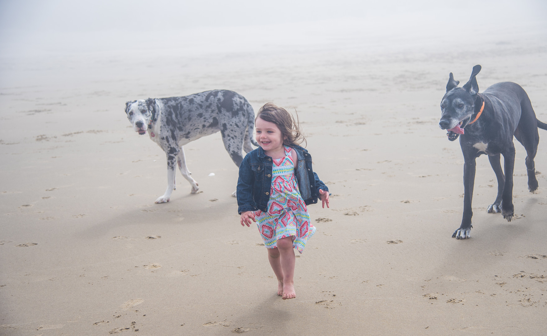 girl with dogs on beach