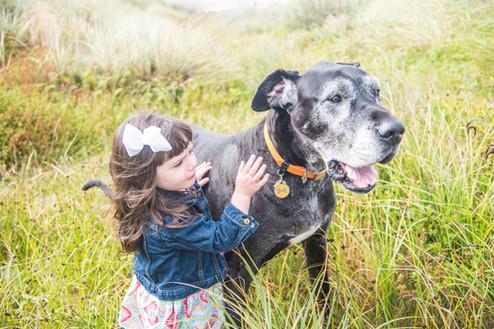 Girl pets Great Dane