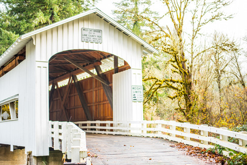 Covered Bridge in Walton