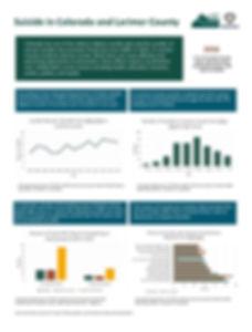 Larimer County VISUAL Fact Sheet.jpg