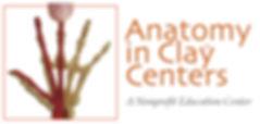 AICC Logo_NPO Ed Cebter.jpeg