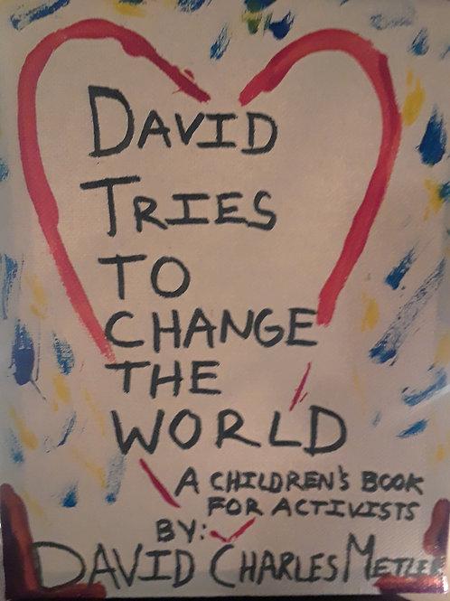Original Children's Book | David Tries to Change the World | Signed