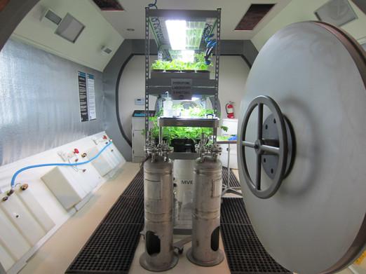 Finished Set - Greenhouse Module