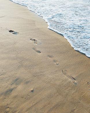 beach-1133584.jpg