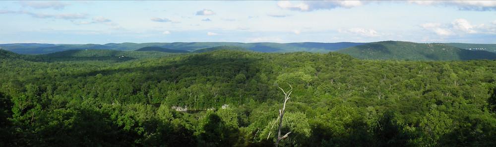 Looking east from Overlook Rock