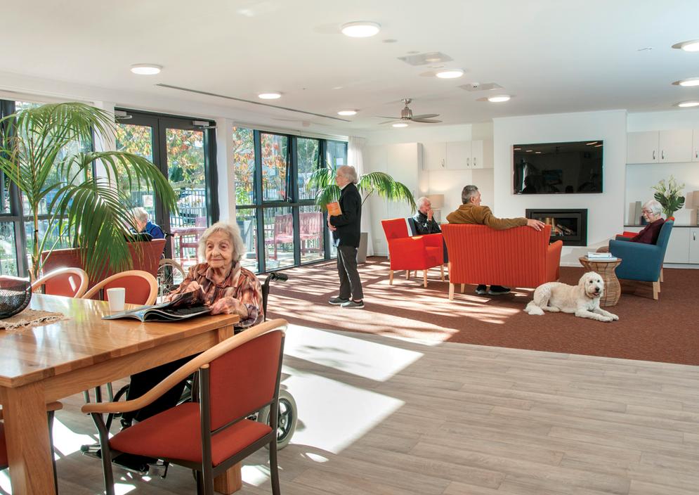 Puriri Home - Pukeko lounge