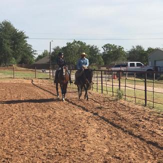 Classics Eventing Horse Training