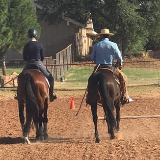 Eventing Horse Training Devout Horsemanship