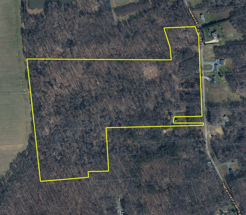 SALE 10698 Chesterville Forest Road