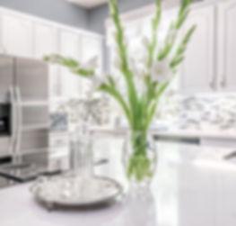 Idalia Kitchen Remodel