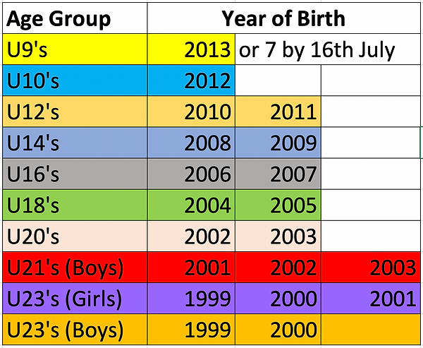 Age groups Spring 2021