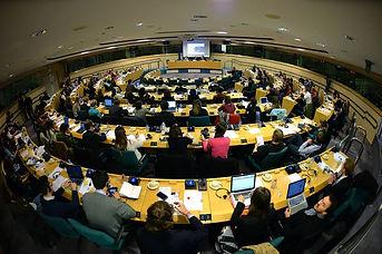 Katarzyna Mortoń, European Parliament, European Youth Press