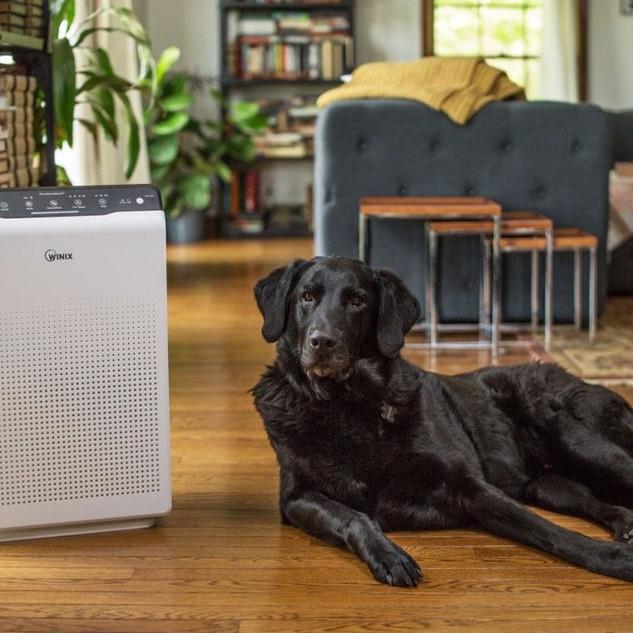 winix-zero-air-purifier-with-free-spare-