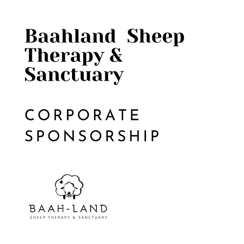Corporate Sponsorship - Early Bird Offer