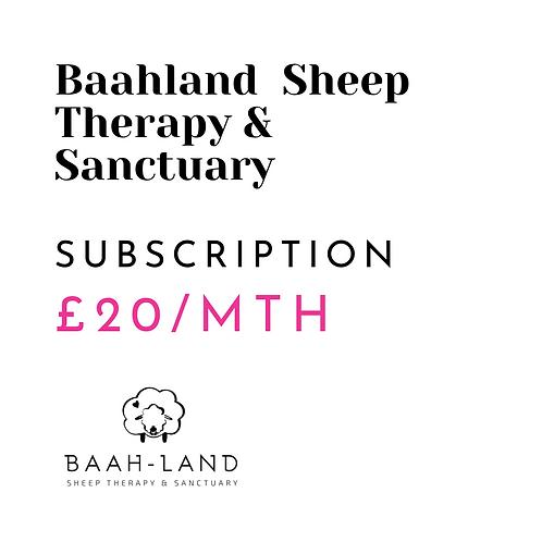 SUBSCRIPTION - £20 a Month