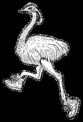 struisvogel-kl.png
