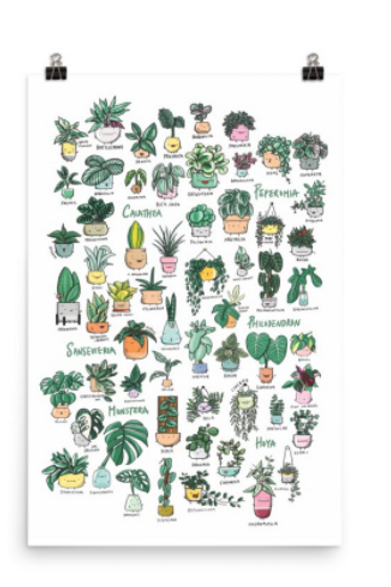 Home By Faith - 'Plant Families Vol. 1' Poster