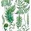 Thumbnail: Sarah Clement - Pacific Northwest Ferns Print