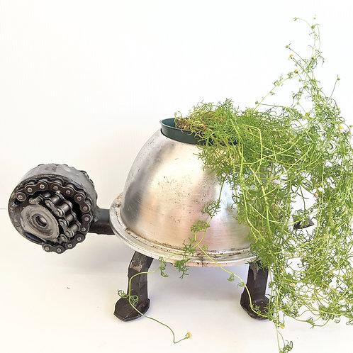 Wingnut Whimsy - Metal Turtle Plant Pot Holder