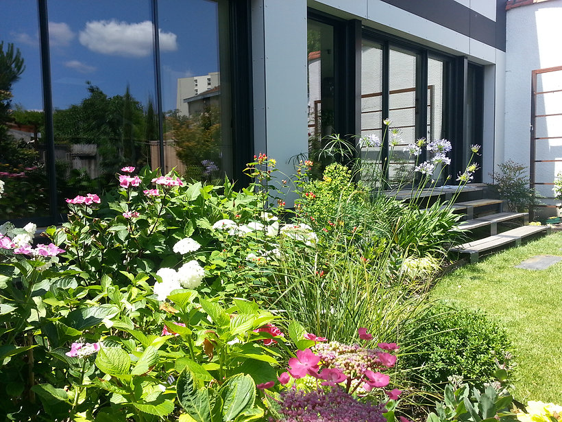 jardin fleuri tarnos, paysagiste bayonne, hortensias sud ouest, agapanthe