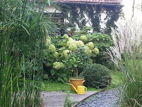 hortensia anabelle, citronier, pots de fleur, bayonne, paillette ardoise, rs paysagisme, paysagiste landes