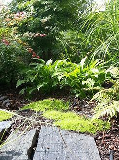 hosta, fougere, acer palmatum, jardinier bayonne