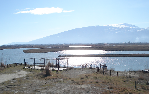 lagoon2.png