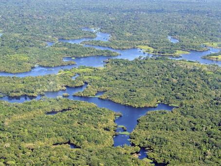 42.000 pessoas na Amazônia brasileira terão luz graças à energia solar