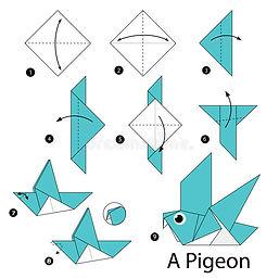 pigeon.jfif