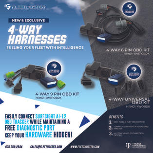 4-Way Harnesses