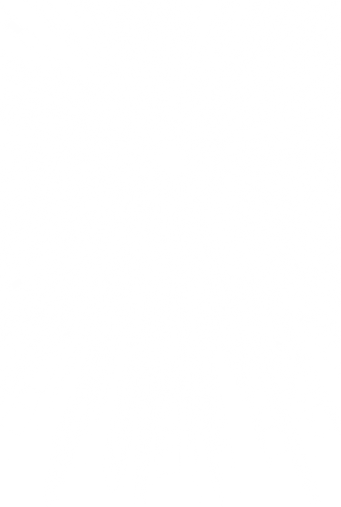 Shimmering Sun Rays.png