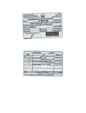 2020 COMPUTER CARD (EXCEL AIR ELECTROMEC