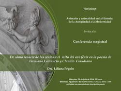 flyer pegolo