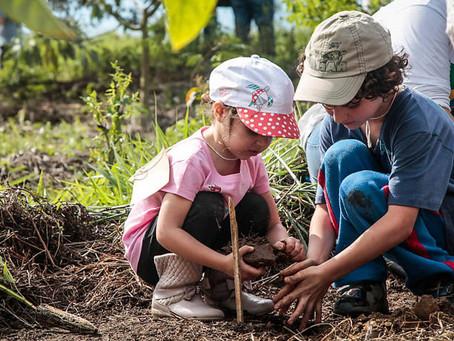 Alto Paraíso terá escola modelo com foco em Sustentabilidade de acordo com metas da ONU
