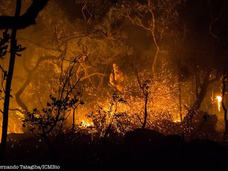 Chapada dos Veadeiros pede Socorro, fogo segue devastando o berço das águas!