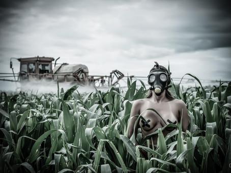 Projeto Fotográfico denuncia o desmatamento e a destruição do cerrado entre o Distrito Federal e a C