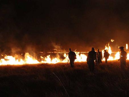 Incêndios e crise hídrica assolam a Chapada dos Veadeiros e Câmara de Vereadores aprova medida que r