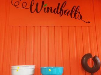 Guest Blog: Windfalls @ Selmes