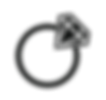ring vector.png